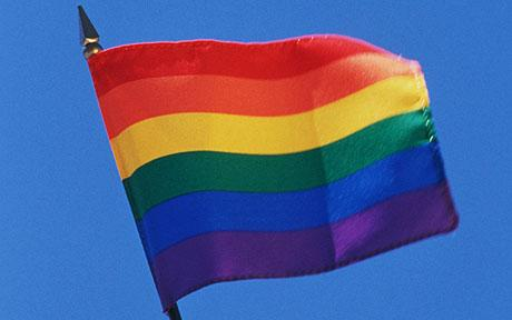 gay_pride_flag.jpg (14244 bytes)